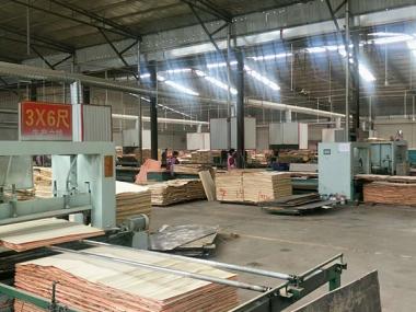 建筑模板生产现场